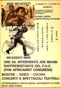 Contro il Sudafrica dei bianchi, manifesto