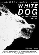 cane bianco, locandina proiezione