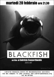 locandina del documentario blackfish